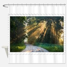 Country Road Sunlight Streaming Thr Shower Curtain