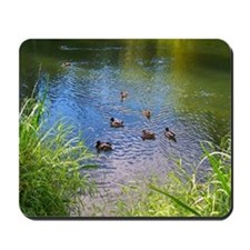 Ducks on Fishing Pond Mousepad
