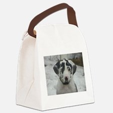 Immortals Spellbound By Moonlight Canvas Lunch Bag