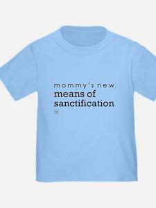 Sanctification (blue) T