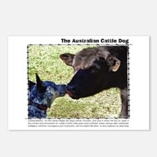 Kissing Cows Postcards (Package of 8)