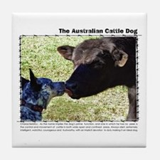 Kissing Cows Tile Coaster