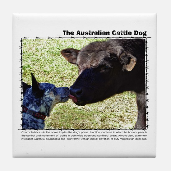 Kissing Cows Tile Coaster