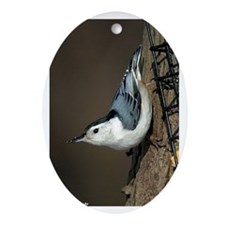 White-breasted Nuthatch Oval Ornament