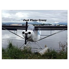 Just plane crazy: float plane 21 Poster