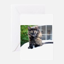 callie the cat Greeting Card