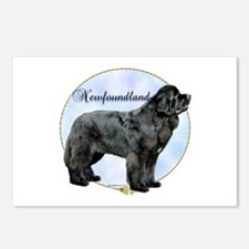 Newfie Portrait Postcards (Package of 8)