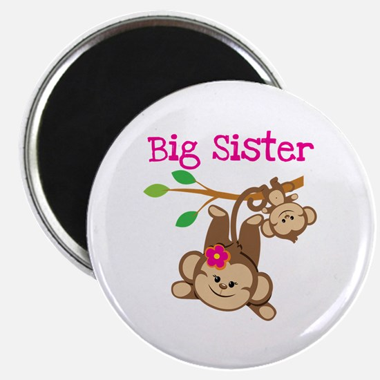 Monkey Big Sis W. Baby Bro Magnet Magnets