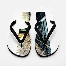 Iron. Flip Flops
