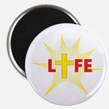Life In Christ (star And Cross) Magnet Magnets