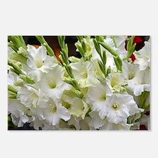 Funny Floral botanical Postcards (Package of 8)