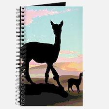 Desert Hills Alpacas Journal