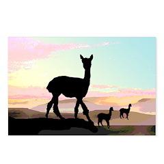 Desert Hills Alpacas Postcards (Package of 8)