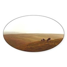 Point Reyes dairy pasture Decal