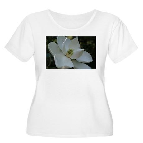 Steel Magnolia Women's Plus Size Scoop Neck T-Shi