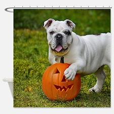 Halloween Bulldog Shower Curtain