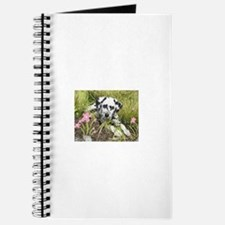 Cool Dalmatians Journal
