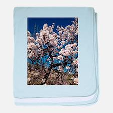 February Blossom baby blanket