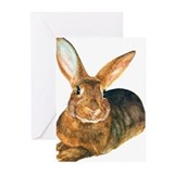 Rabbit Greeting Cards (10 Pack)