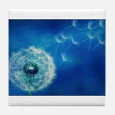 Dandelions in the Blue Tile Coaster