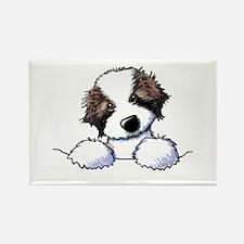 St. Bernard Puppy Pocket Magnets