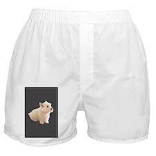 Grumpy dog Boxer Shorts