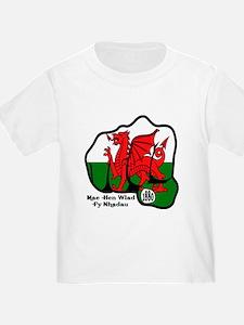 Wales Fist 1881 T
