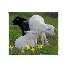 Three Baby Sheep Throw Blanket