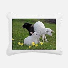 Three Baby Sheep Rectangular Canvas Pillow