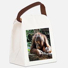 amazing Animal Canvas Lunch Bag