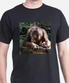 amazing Animal Orang Baby T-Shirt