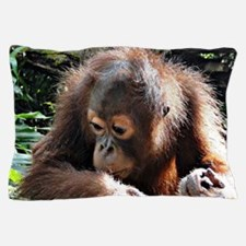 amazing Animal Orang Baby Pillow Case