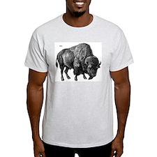 Bison (Front) Ash Grey T-Shirt