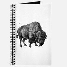 Bison Journal