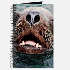 amazing Animal-sea lion Journal