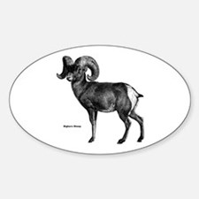 Bighorn Sheep Oval Decal