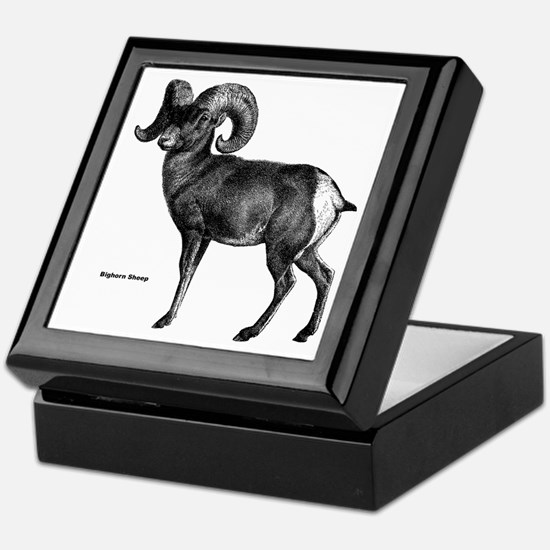 Bighorn Sheep Keepsake Box