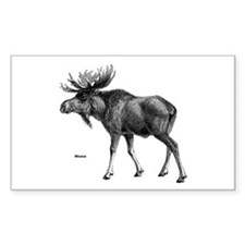 Moose Rectangle Decal