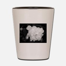 Peony Black & White Shot Glass