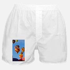 Balloons 6788 Ascending Boxer Shorts