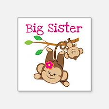 Monkey Big Sis Baby Bro Sticker