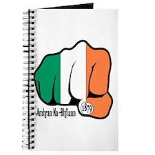 Irish Fist 1879 Journal