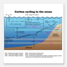 "Ocean carbon cycle Square Car Magnet 3"" x 3"""