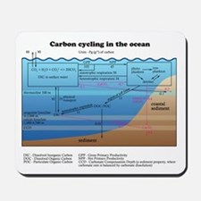 Ocean carbon cycle Mousepad