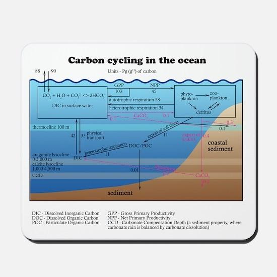 Ocean carbon cycle Mousepad