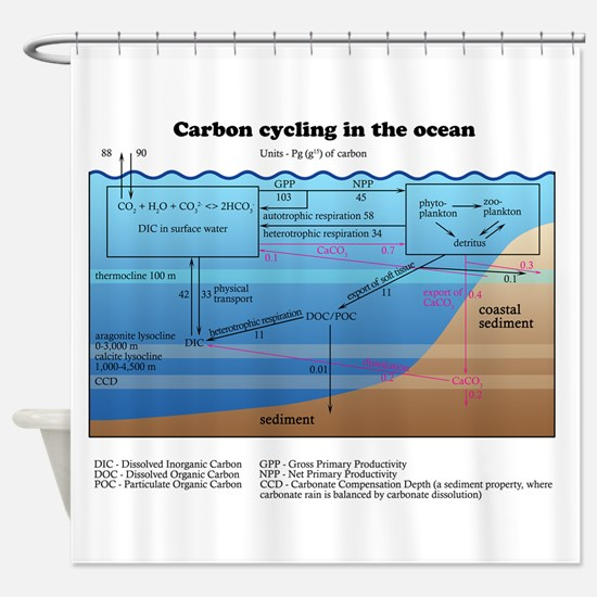 Ocean carbon cycle Shower Curtain