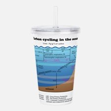 Ocean carbon cycle Acrylic Double-wall Tumbler