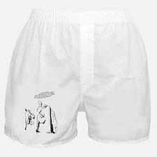 Lincoln Memorial, DC Boxer Shorts