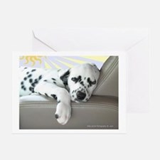 Dalmatian Sleeping in Car Greeting Cards