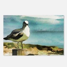 Seagull Sentry Postcards (Package of 8)